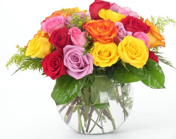 Khi nào nên tặng hoa hồng nhiều màu sắc