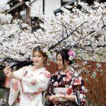 Ý nghĩa màu aoskimono trong văn hóa nhật bản