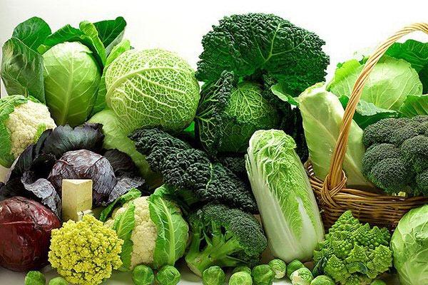 Những thực phẩm chứa nhiều collagen