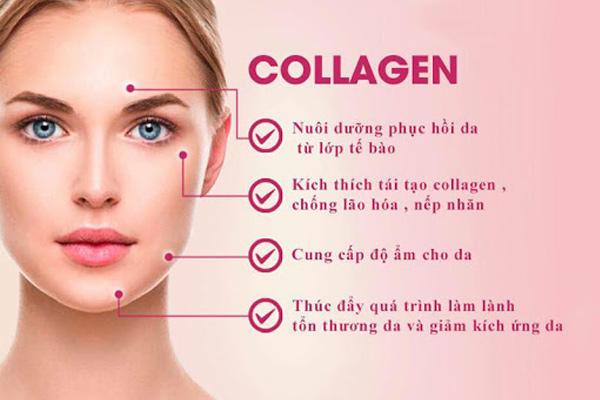 Tác dụng của collagen với da